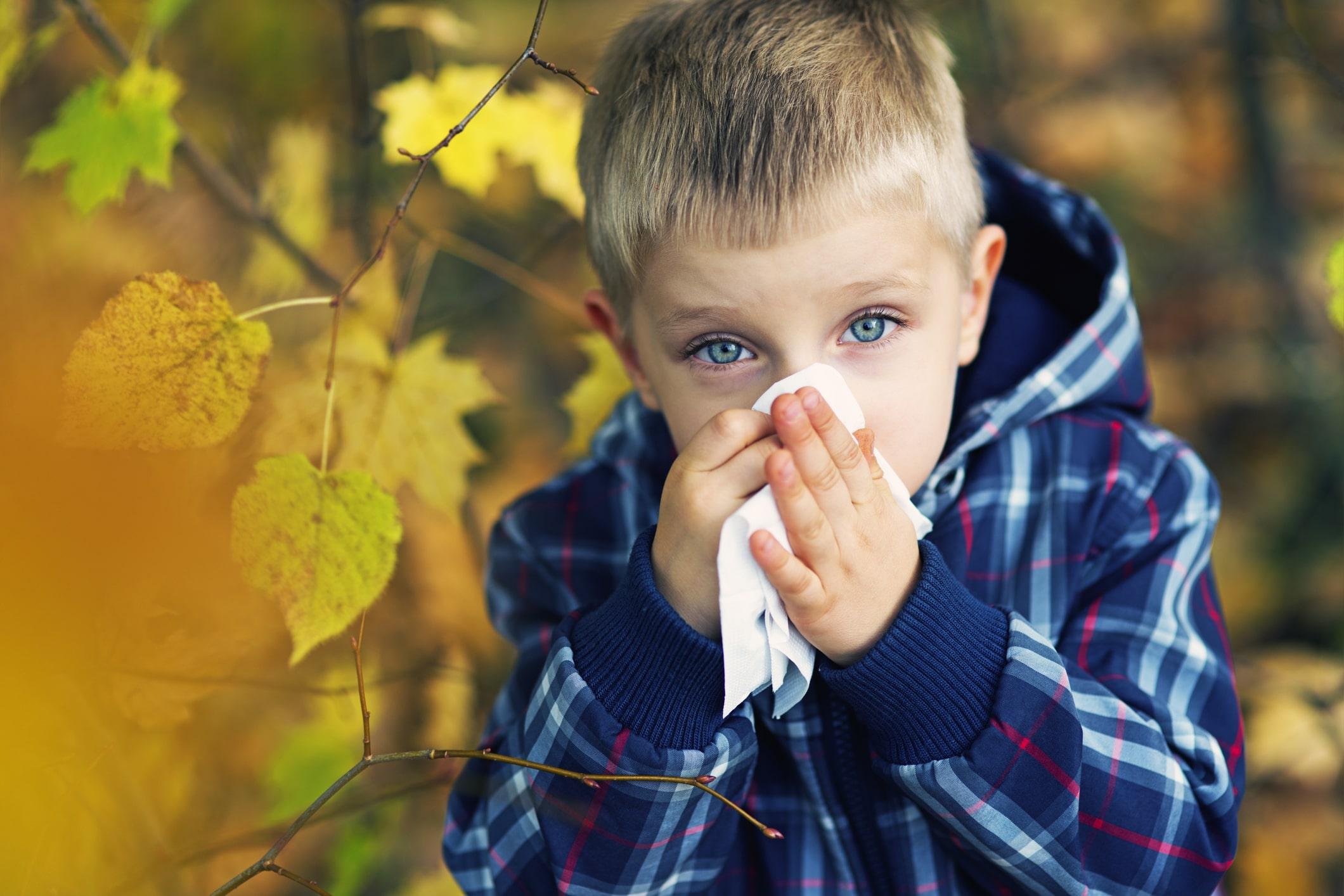 alergia outono